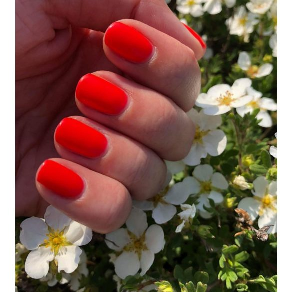 Gel Nail Polish - DN196 - Sex On The Beach