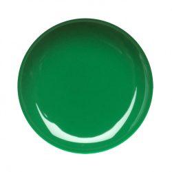 Colour Gel- Green #023