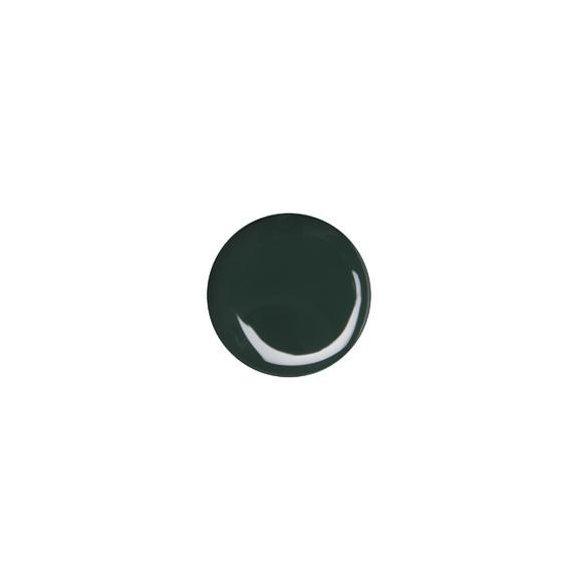 Color Gel 5g- Dark Green #040